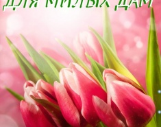 Тюльпаны к празднику для милых дам